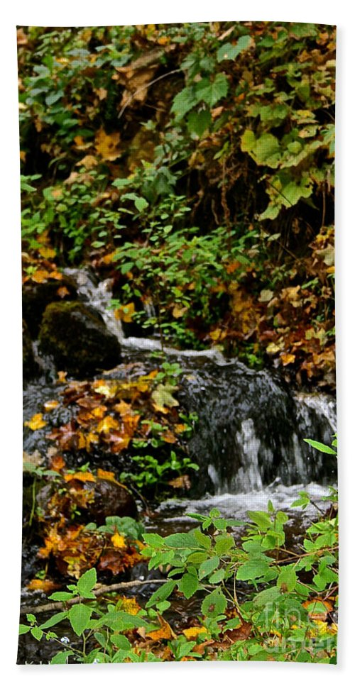 Landscape Hand Towel featuring the photograph Casual Creek by Susan Herber