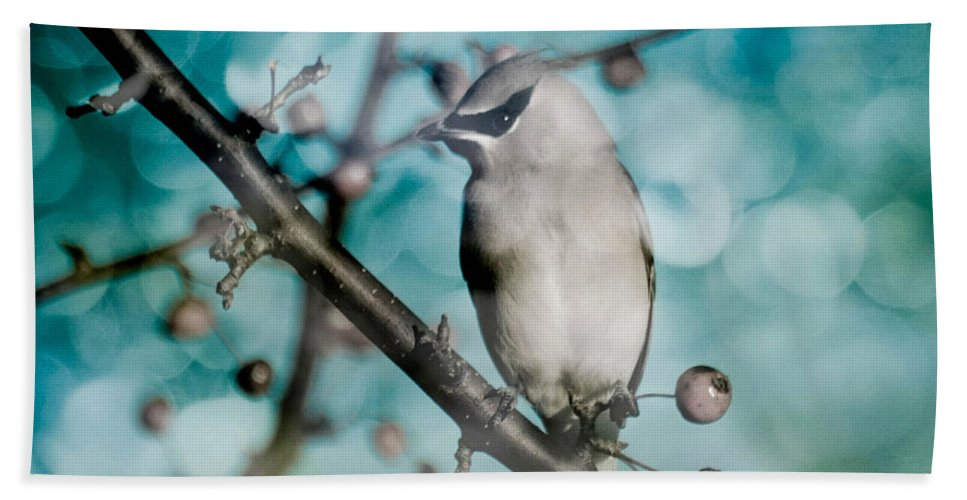 Bird Bath Towel featuring the photograph Catch The Bandit by Trish Tritz