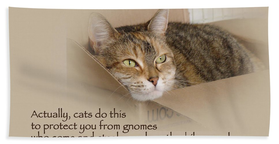 Quotation Bath Sheet featuring the photograph Cats Protecting You From Gnomes - Lily The Cat by Mother Nature