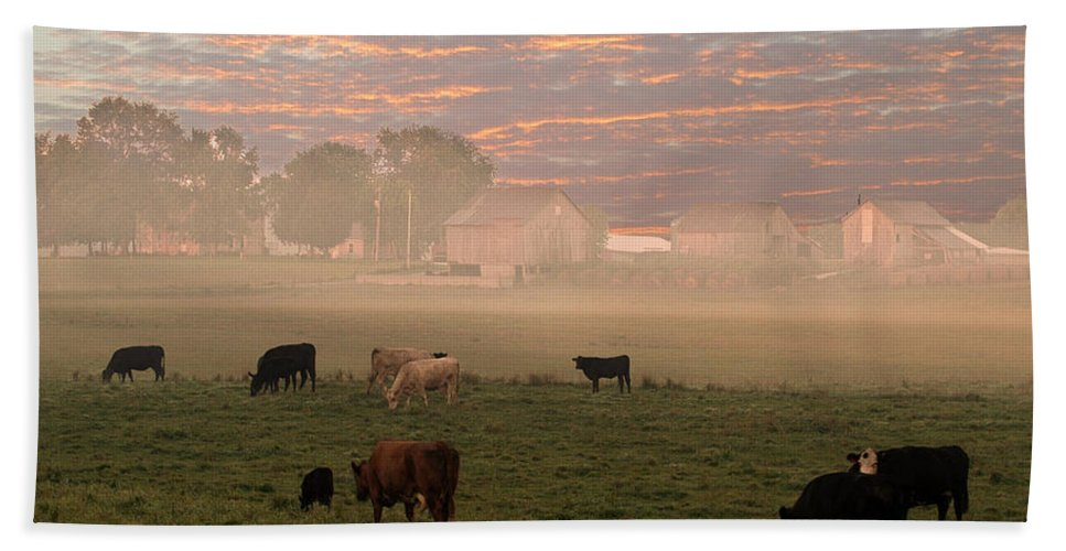 Cattle Hand Towel featuring the photograph Cattle In The Fog by Randall Branham