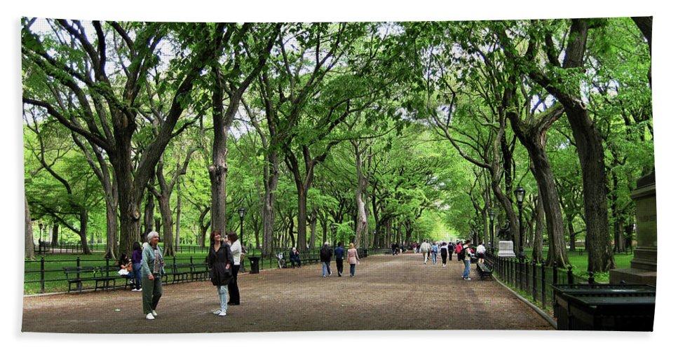 Central Park Bath Sheet featuring the photograph Central Park Arbor Walk Spring by Lorraine Devon Wilke