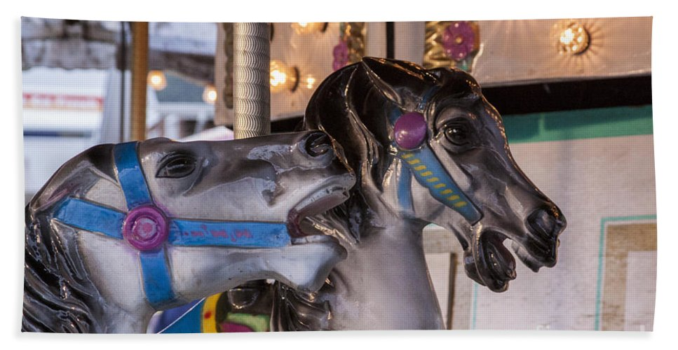 Carousel Bath Sheet featuring the photograph Chat With Me by Darleen Stry