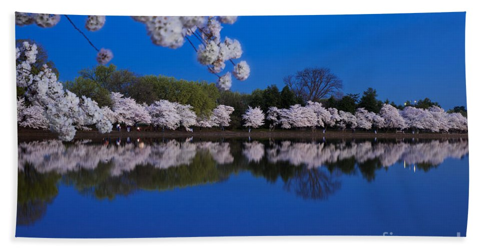 Blossom Hand Towel featuring the photograph Cherry Blossoms And The Tidal Basin by Brian Jannsen
