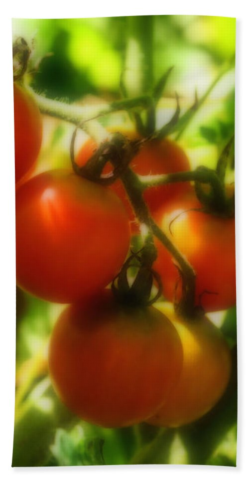 Food Bath Sheet featuring the photograph Cherry Tomatoes On The Vine by Smilin Eyes Treasures