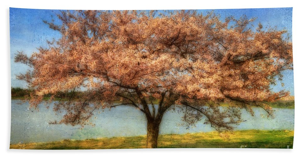 Cherry Tree Bath Sheet featuring the photograph Cherry Tree by Lois Bryan