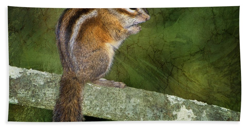 Chipmunk Hand Towel featuring the photograph Chipmunk In The Forest by Betty LaRue