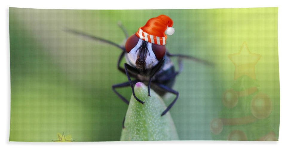 Christmas Bath Sheet featuring the photograph Christmas Blow Fly by Ronel Broderick