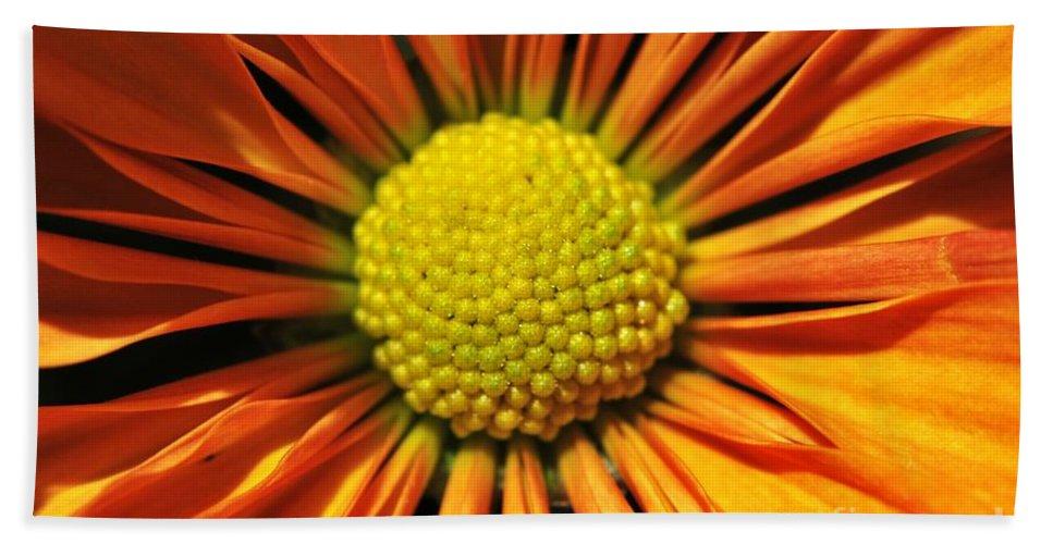 Yhun Suarez Hand Towel featuring the photograph Chrysanthemum by Yhun Suarez