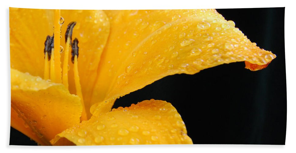 Flowers Bath Sheet featuring the photograph Citrus Rain II by Terri Winkler