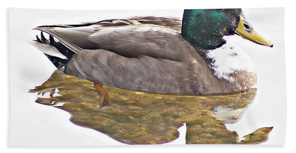 Duck Bath Sheet featuring the photograph Clear Reflection by Joe Faherty