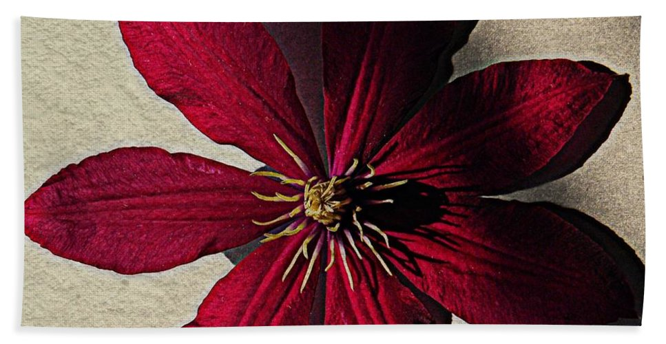 Nature Hand Towel featuring the photograph Clematis by Chris Berry