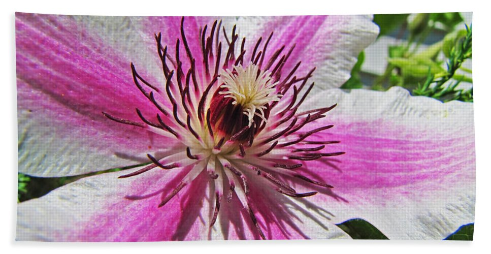 Nature Bath Sheet featuring the photograph Clematis II by Debbie Portwood