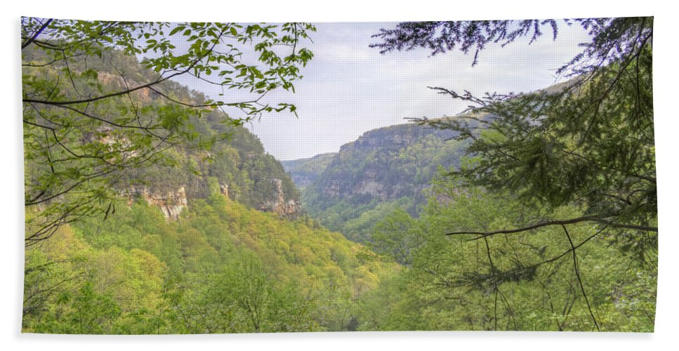 Cloudland Canyon Hand Towel featuring the photograph Cloudland Canyon by David Troxel