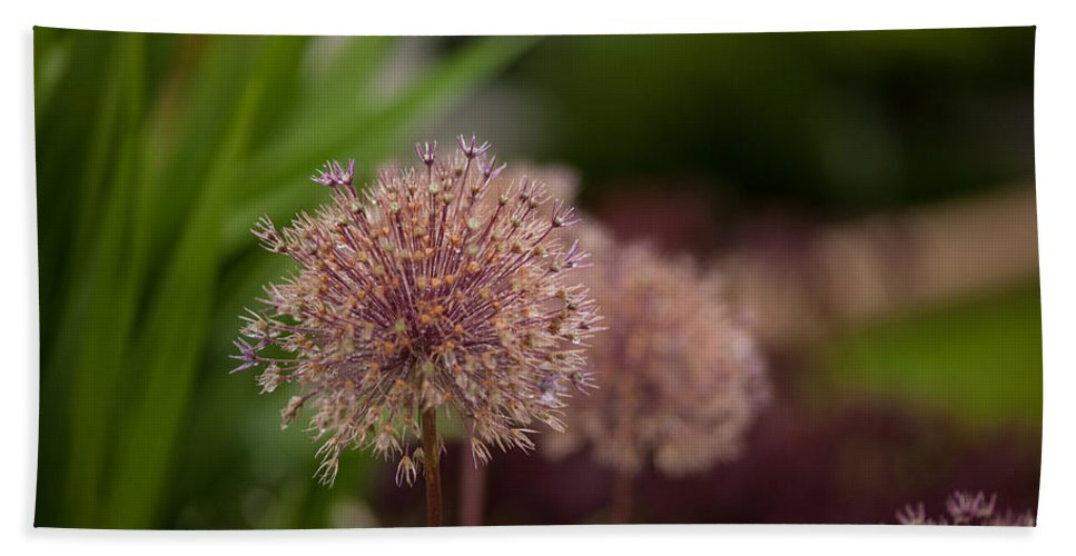 Flower Hand Towel featuring the photograph Cluster Of Beauty by Mike Reid