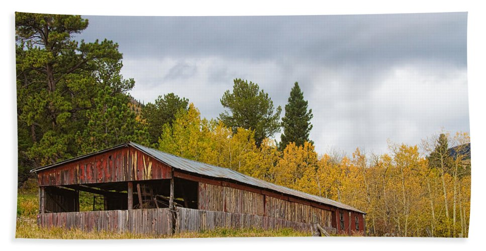 Barn Hand Towel featuring the photograph Colorado Rustic Autumn High Country Barn by James BO Insogna
