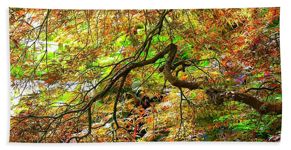Spring Trees Bath Sheet featuring the photograph Colorful Maple Leaves by Carol Groenen
