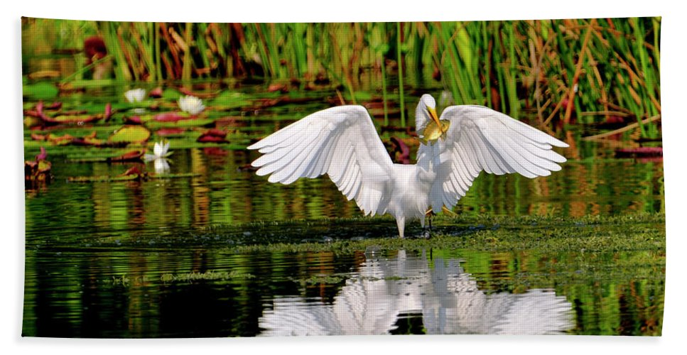 Great White Egret Hand Towel featuring the photograph Colorful Morning At The Wetlands by Bill Dodsworth