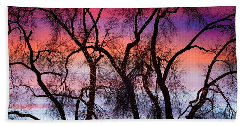 'canvas Art' Hand Towel featuring the photograph Colorful Silhouetted Trees 9 by James BO Insogna
