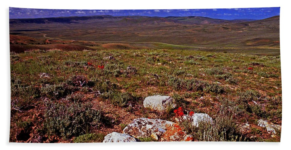 Wyoming Bath Sheet featuring the photograph Colorful Valley From Fossil Lake Trail by Rich Walter