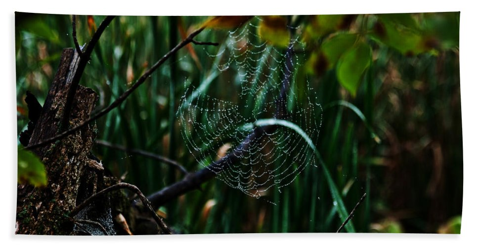 Spider Bath Sheet featuring the photograph Come Into My Palor by Edward Peterson