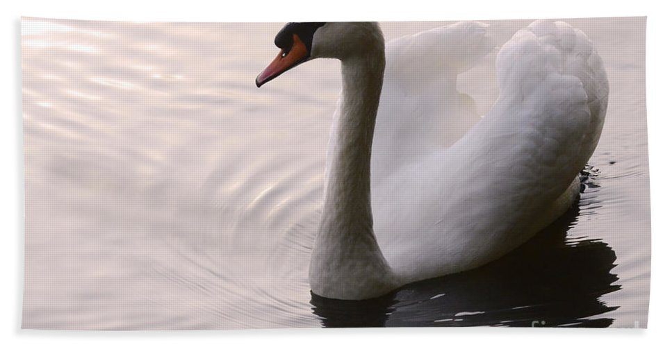 Swan Bath Towel featuring the photograph Completely Elegant by Bob Christopher
