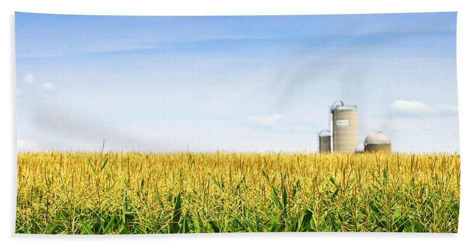 Agriculture Hand Towel featuring the photograph Corn Field With Silos by Elena Elisseeva
