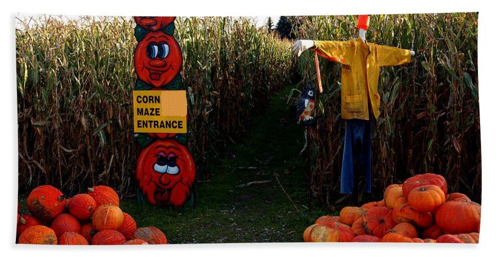 Usa Bath Sheet featuring the photograph Corn Maze by LeeAnn McLaneGoetz McLaneGoetzStudioLLCcom