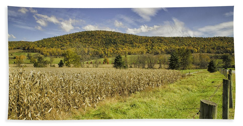 Landscape Hand Towel featuring the photograph Cornfield by Fran Gallogly