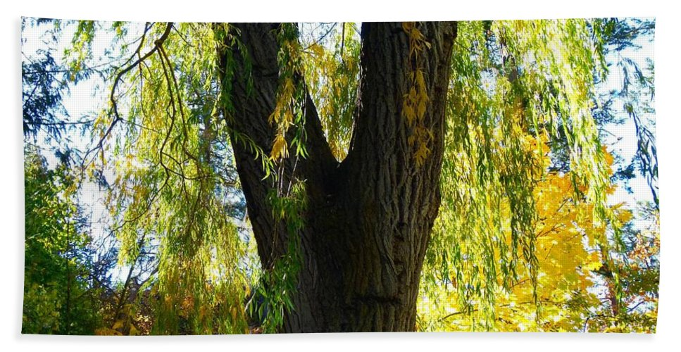 Autumn Hand Towel featuring the photograph Country Color 20 by Will Borden