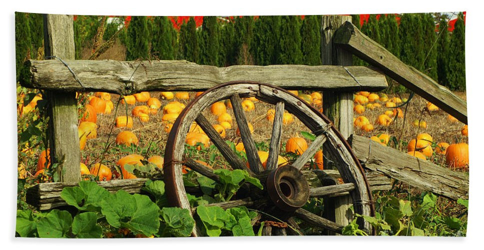 Fences Bath Sheet featuring the photograph Country Fence by Randy Harris