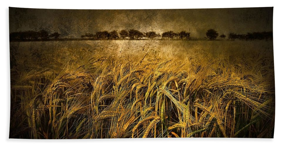 Flowres Bath Sheet featuring the photograph Countryside by Svetlana Sewell
