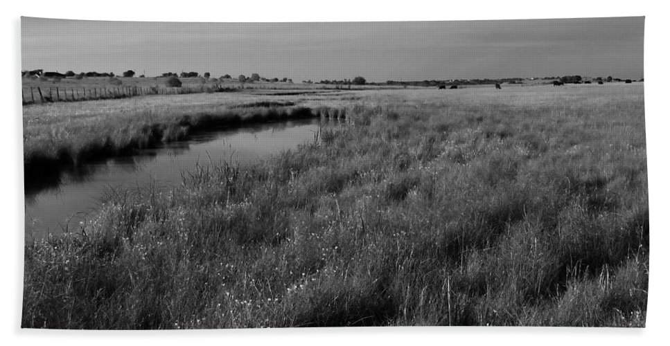 Black And White Bath Sheet featuring the photograph Cow Field 2 by Sean Wray