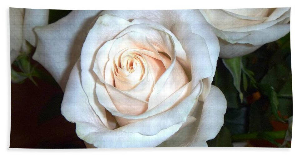 Creamy Roses Hand Towel featuring the photograph Creamy Roses IIi by Alys Caviness-Gober