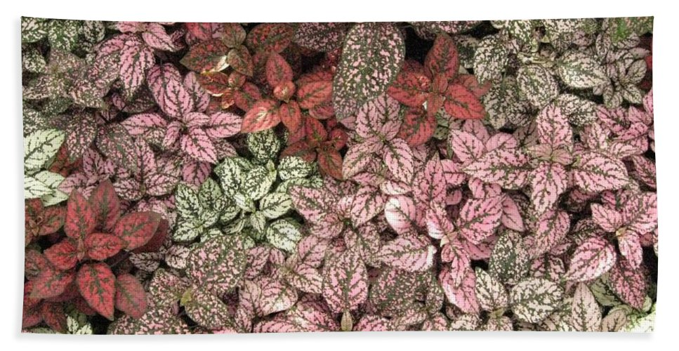 Lovely Coloured Leaves Bath Sheet featuring the photograph Creative Hues Of Mother Nature by Sonali Gangane