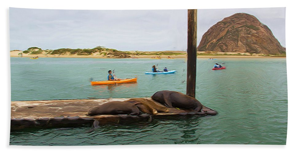 Morro Rock Hand Towel featuring the photograph Curious About Sea Lions by Heidi Smith