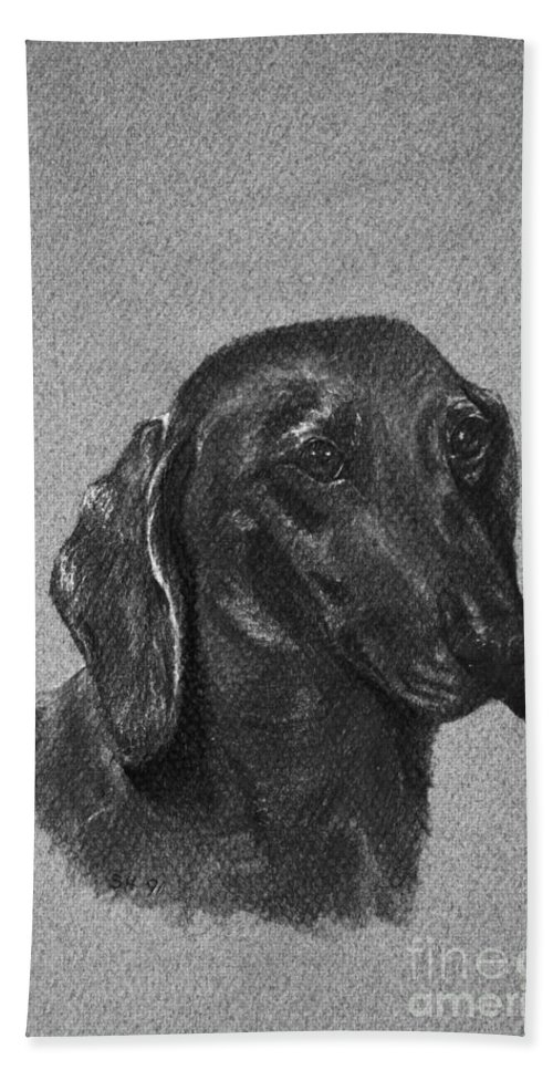 Dog Bath Sheet featuring the drawing Dachshund by Susan Herber