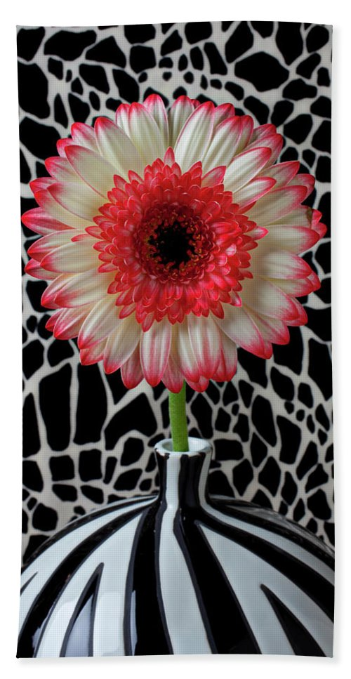 Daisy Mum Flower Vase Red Bath Sheet featuring the photograph Daisy And Graphic Vase by Garry Gay