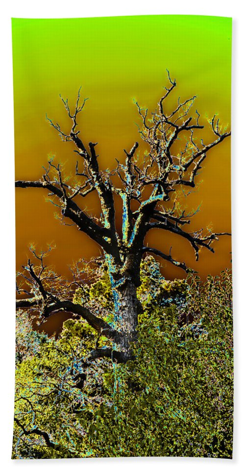 Nature Bath Sheet featuring the photograph Dead Tree I by Debbie Portwood