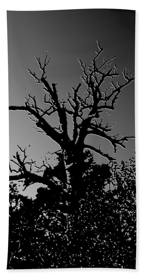 Nature Bath Sheet featuring the photograph Dead Tree II by Debbie Portwood
