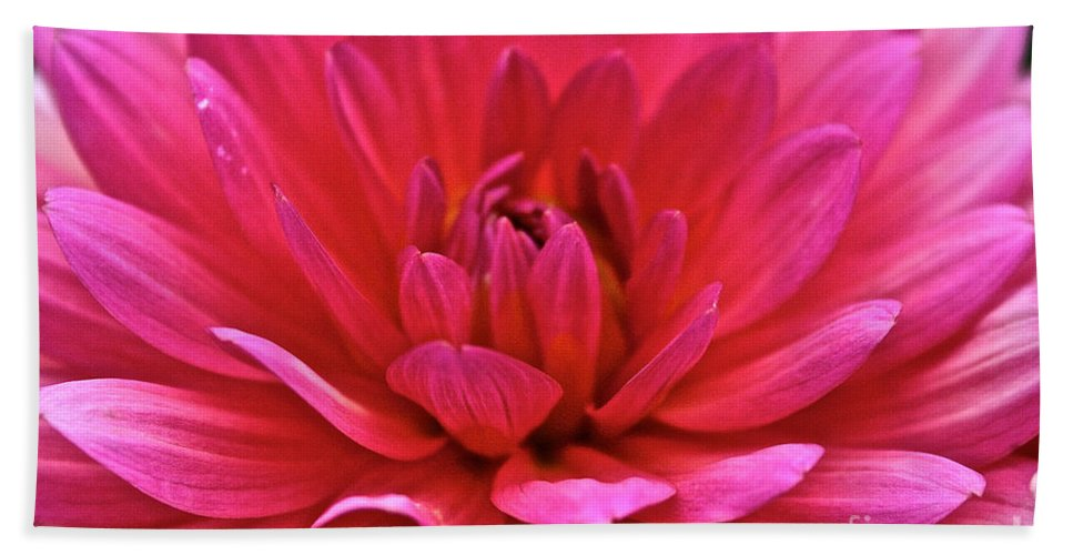 Floral Hand Towel featuring the photograph Decadent Dahlia by Susan Herber