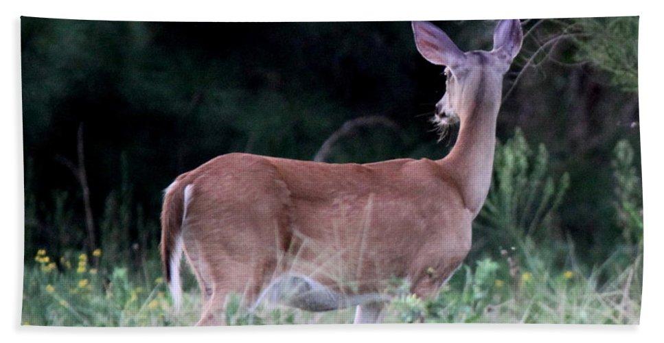 Virginia Whitetail Deer Bath Sheet featuring the photograph Deer - Doe - I Heard Something by Travis Truelove