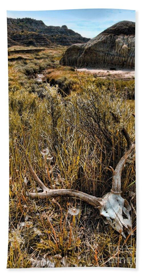 Deer Skull Bath Sheet featuring the photograph Deer Skull In Montana Badlands by Jill Battaglia