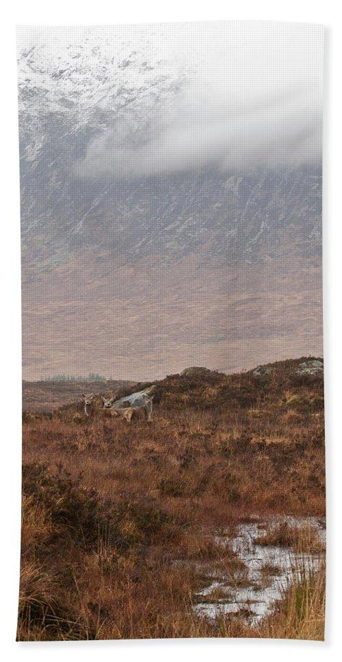 Rannoch Moor Bath Sheet featuring the photograph Deer Southern Highlands by Gary Eason