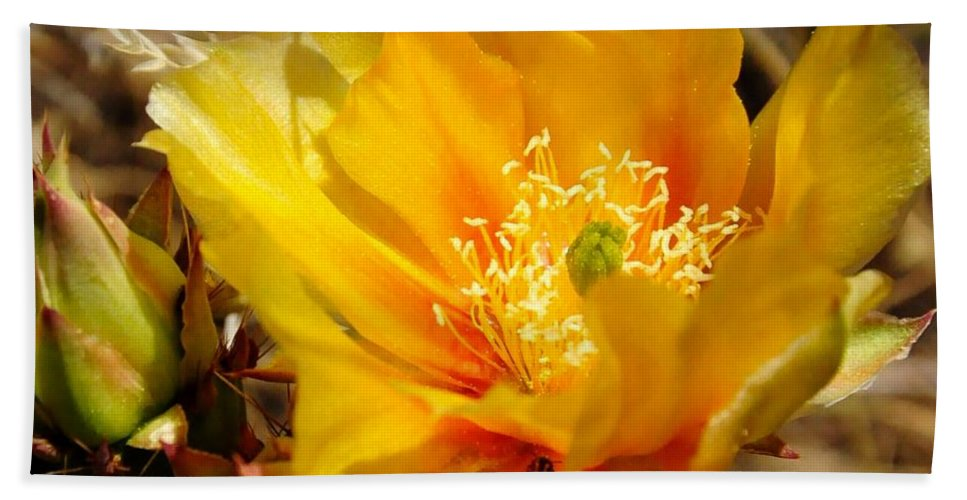 Bath Sheet featuring the photograph Desert Bloom by Mark Valentine