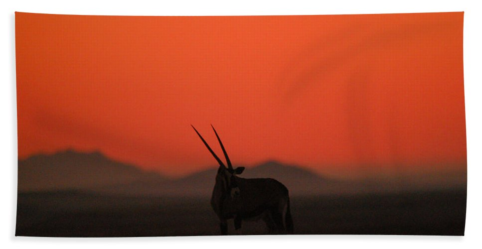 Action Hand Towel featuring the photograph Desert Horns by Alistair Lyne