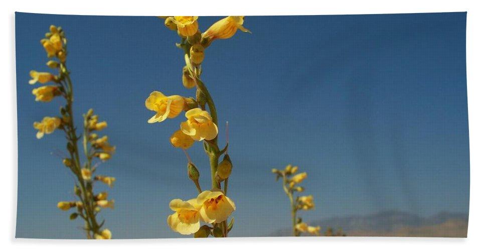 Desert Bath Sheet featuring the photograph Desert Sweetpea by Jonathan Barnes