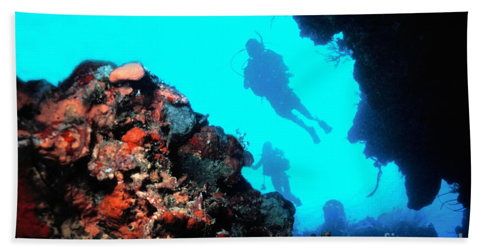Diver Hand Towel featuring the photograph Diver Down by Mike Nellums