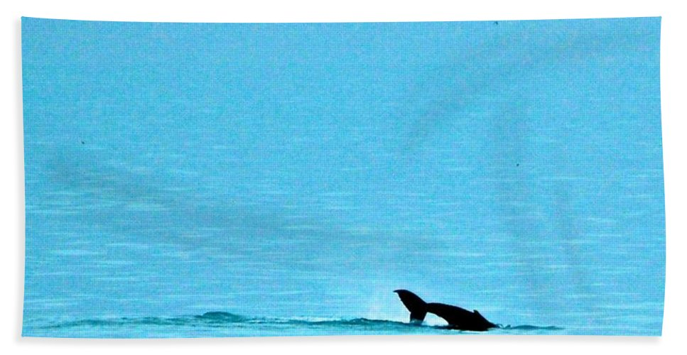 Humpback Whale Bath Sheet featuring the photograph Diving For Dinner by Eric Tressler
