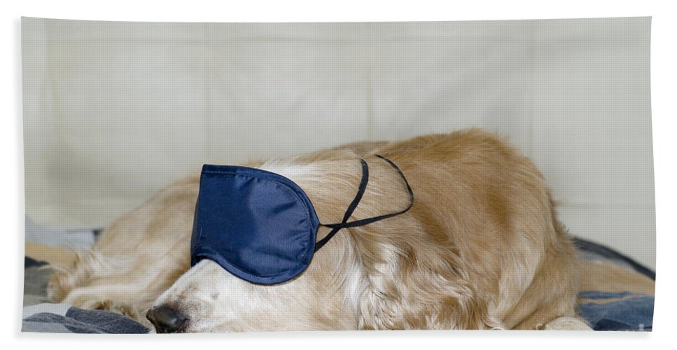 Dog Bath Sheet featuring the photograph Dog Sleeping With A Sleep Mask by Mats Silvan