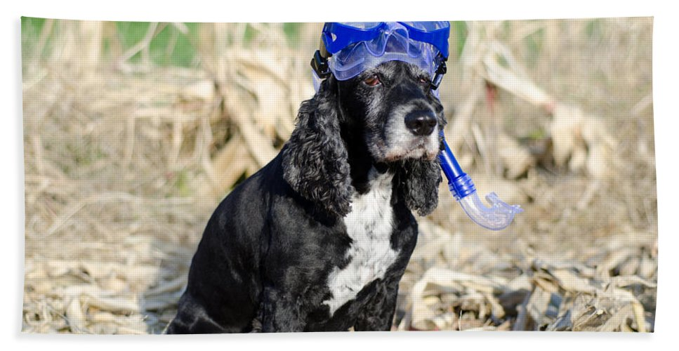 Dog Bath Sheet featuring the photograph Dog With Diving Mask by Mats Silvan